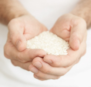 hands offering food