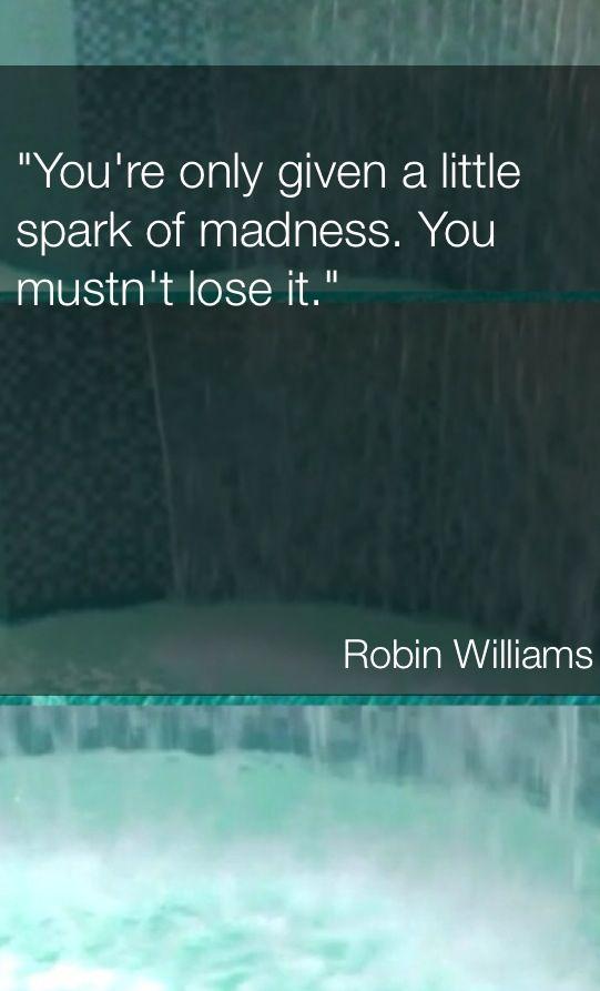 Robin William's Quote