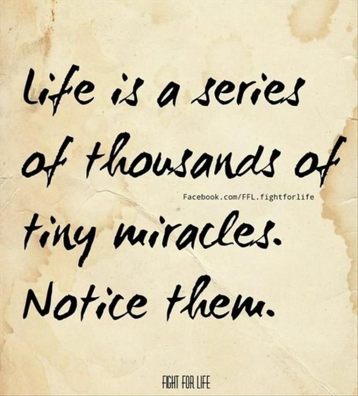 Gratitude, Mundane Monday
